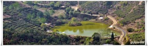 Salamander lake