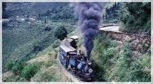 train123